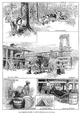 African-american Drawing - Turpentine Industry, 1884 by Granger