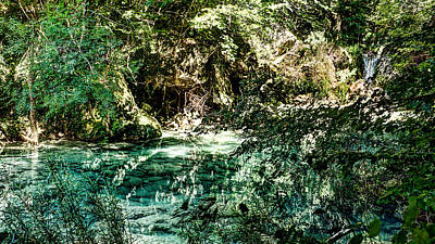 Photograph - Turquoise Forest Pond On A Summer Day No1 by Weston Westmoreland