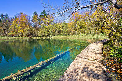 Shark Art - Turquoise Plitvice lakes national park by Brch Photography