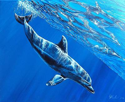 Bottle-nose Painting - Tursiops Truncatus by Wade  Geilow