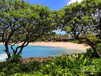 Art Print featuring the photograph Turtle Bay Beach by Kristine Merc