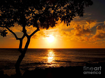 Art Print featuring the photograph Turtle Bay Sunset by Kristine Merc
