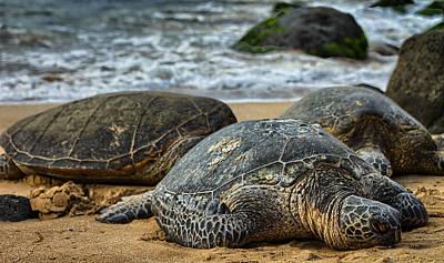 Photograph - Turtle Beach by Chris Multop