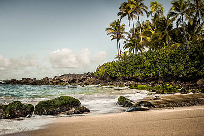 Photograph - Turtle Beach by Jason Bartimus