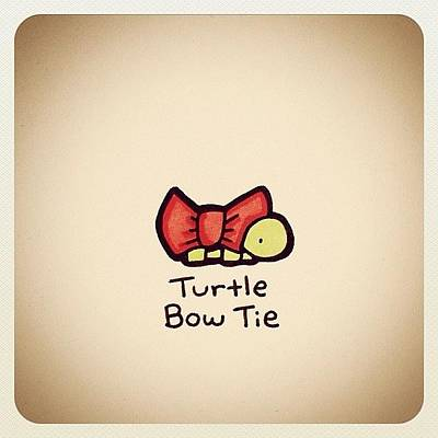 Reptiles Wall Art - Photograph - Turtle Bow Tie by Turtle Wayne