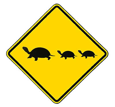 Digital Art - Turtle Crossing Sign by Marvin Blaine