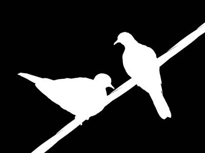 Dove Photograph - Turtle Doves by Bishopston Fine Art