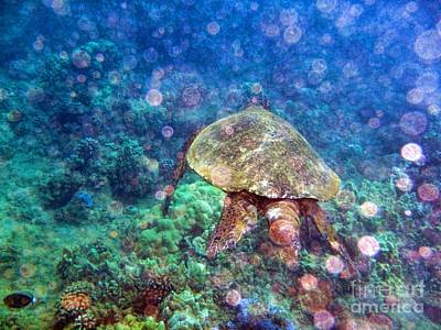Photograph - Turtle Fantasy by Peggy Hughes