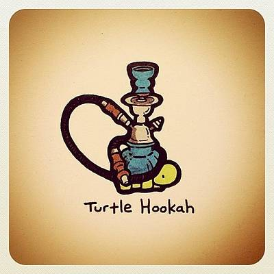 Reptiles Wall Art - Photograph - Turtle Hookah by Turtle Wayne