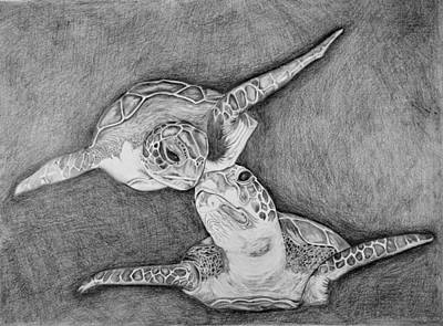 Reptiles Drawings - Turtle love by Edward Johnston