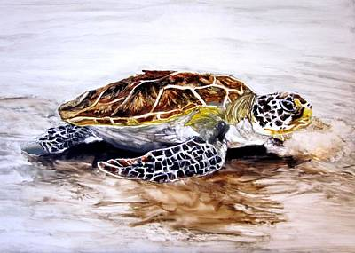Turtle On The Beach Art Print