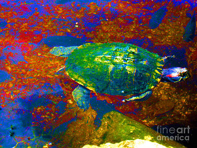 Digital Art - Turtle. Red And Blue by Oksana Semenchenko