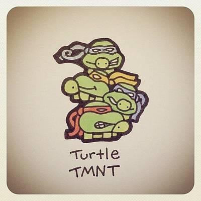 Reptiles Wall Art - Photograph - Turtle Tmnt #turtleadayjune by Turtle Wayne