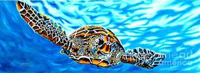 Turtle World Original