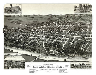 Vintage Map Painting - Tuscaloosa - Alabama - 1887 by Pablo Romero