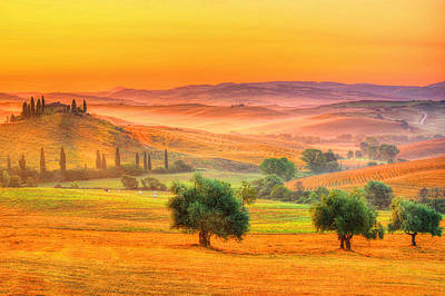 Vineyards Photograph - Tuscan Dream by Midori Chan