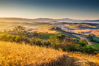 Tuscan Gold 2.0 Print by JR Photography