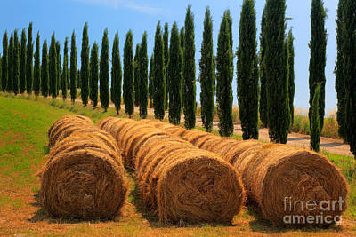 Montalcino Photograph - Tuscan Hay by Inge Johnsson