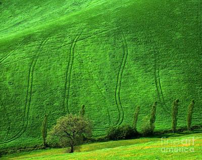 Photograph - Tuscan Hills 05 by Giorgio Darrigo