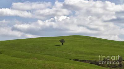 Giornata Photograph - Tuscan Hills by Silvia Pezzola
