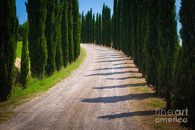 Montalcino Photograph - Tuscan Road by Inge Johnsson