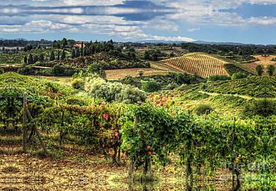 Tuscany Landscape Art Print by Tom Dale
