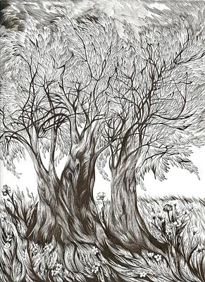 Tuscany Olives Art Print by Anna  Duyunova