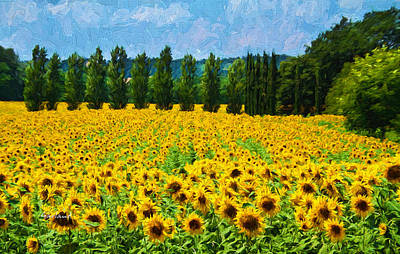 Tuscany Art Mixed Media - Tuscany Sunflowers by Garland Johnson