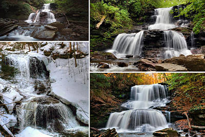 Photograph - Tuscarora Falls In Every Season by Gene Walls