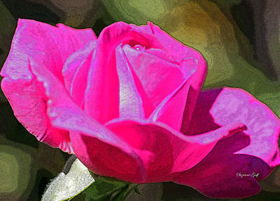 Tuscon Desert Rose Art Print by Suzanne Gaff