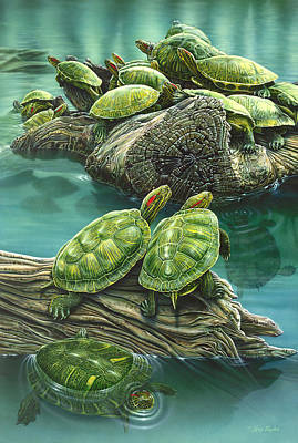 Tutle Pond Art Print by Larry Taugher