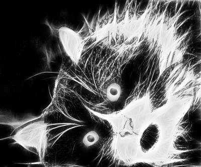 Digital Art - Tuxedo Cat In Black And White by Marlene Watson