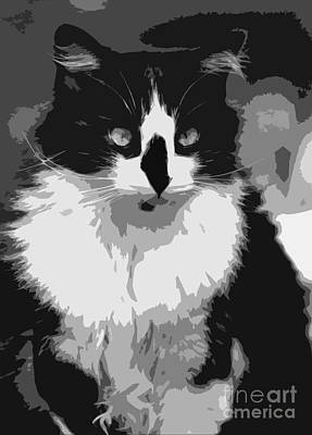 Tuxedo Cat  Art Print by Juls Adams
