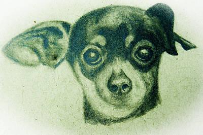Drawing - Tweak by Suzie Hanscom