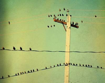 Tweets Digital Art - Tweeters Tweeting by Gothicrow Images