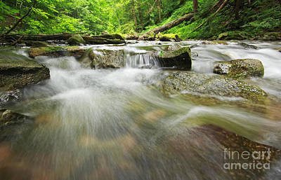 Photograph - Twelve Mile Creek by Charline Xia