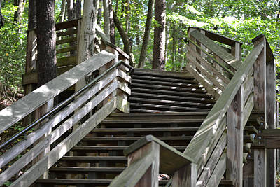 Photograph - Twenty More Steps To The Top Of The Stairs by rd Erickson