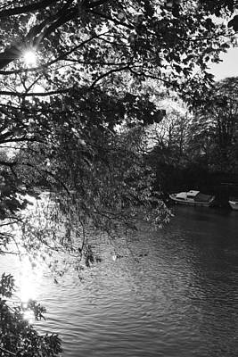 Photograph - Twickenham River Thames by Maj Seda
