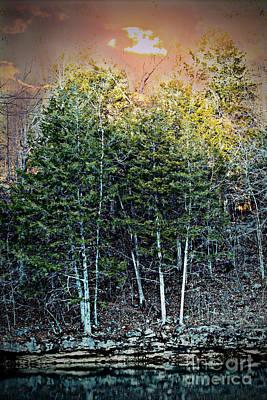 Photograph - Twilight At Dogwood Canyon by Elizabeth Winter