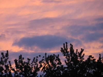 A Summer Evening Photograph - Twilight Beauty by Sonali Gangane