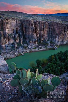 Rio Grande River Photograph - Twilight Cactus by Inge Johnsson