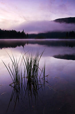 Photograph - Twilight Glow by Mike  Dawson