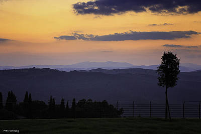 Photograph - Twilight In Montalcino by Fran Gallogly