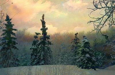 Twilight In The Forest Art Print by Shirley Sirois