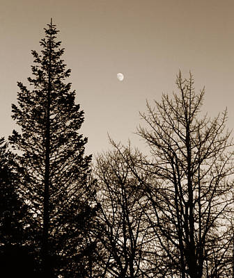 Sihlouette Photograph - Twilight Moon by Marilyn Hunt