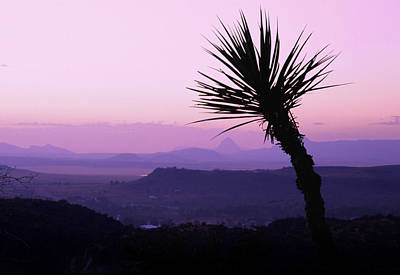 Photograph - Twilight On The Desert by David and Carol Kelly