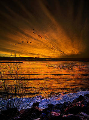 Fall Leaves Photograph - Twilight Sonnet by Phil Koch