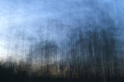 Chemtrails Photograph - Twilight Trees by Brad Emerick