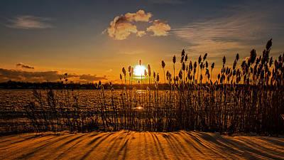 Photograph - Twilight Winter Reeds Along The Niagara by Chris Bordeleau
