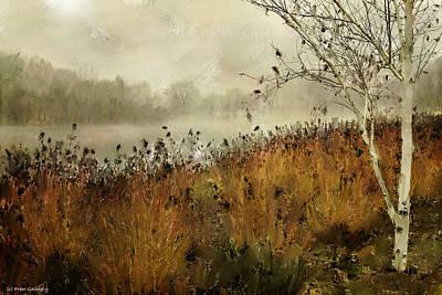 Twin Brooks Park In Fog Art Print